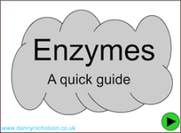 Enzymes Quick Guide