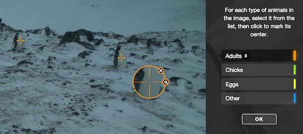 penguinwatch-ex